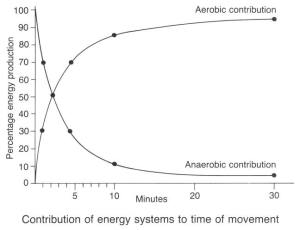 energysys1