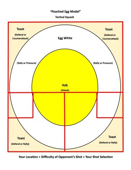 Egg Model for Squash Tactics